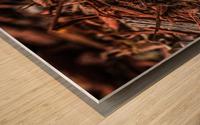 IMG_4228 Wood print