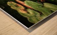 Rosewater Wood print