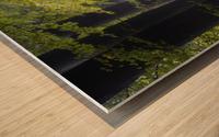 Alley of replenishing energy Wood print
