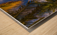 Palm trees low angle view Wood print