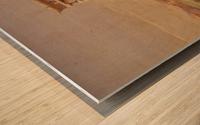 The Prostasis Wood print