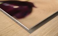 Solar cups Wood print