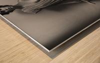 Nemesis Wood print