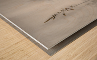 blade of grass Wood print