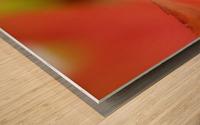 Ladybird in autumn Wood print
