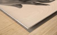 Succulent Silk Wood print