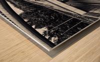 circulation Wood print