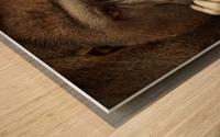 SENSE OF LIFE ... Wood print