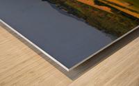 East Devon balescape Wood print