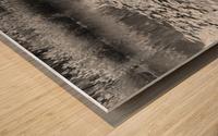 Weeping Lillies Wood print