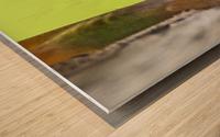 IMG_1264 Wood print