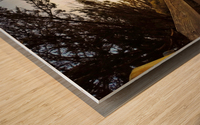 Montara Wood print
