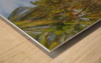 Earth Topical Road Porto Galinhas Brazil 2 Wood print
