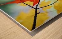 Oregon, United States Of America; An Orange Leaf Fallen On Yellow Leaves Wood print