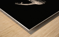 A Woman Prepares To Jump Backwards Off The Edge Of A Pool Into The Water; Tarifa, Cadiz, Andalusia, Spain Wood print