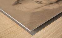 Pronk 1750 Wood print