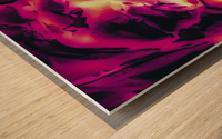 closeup pink rose texture abstract background Wood print