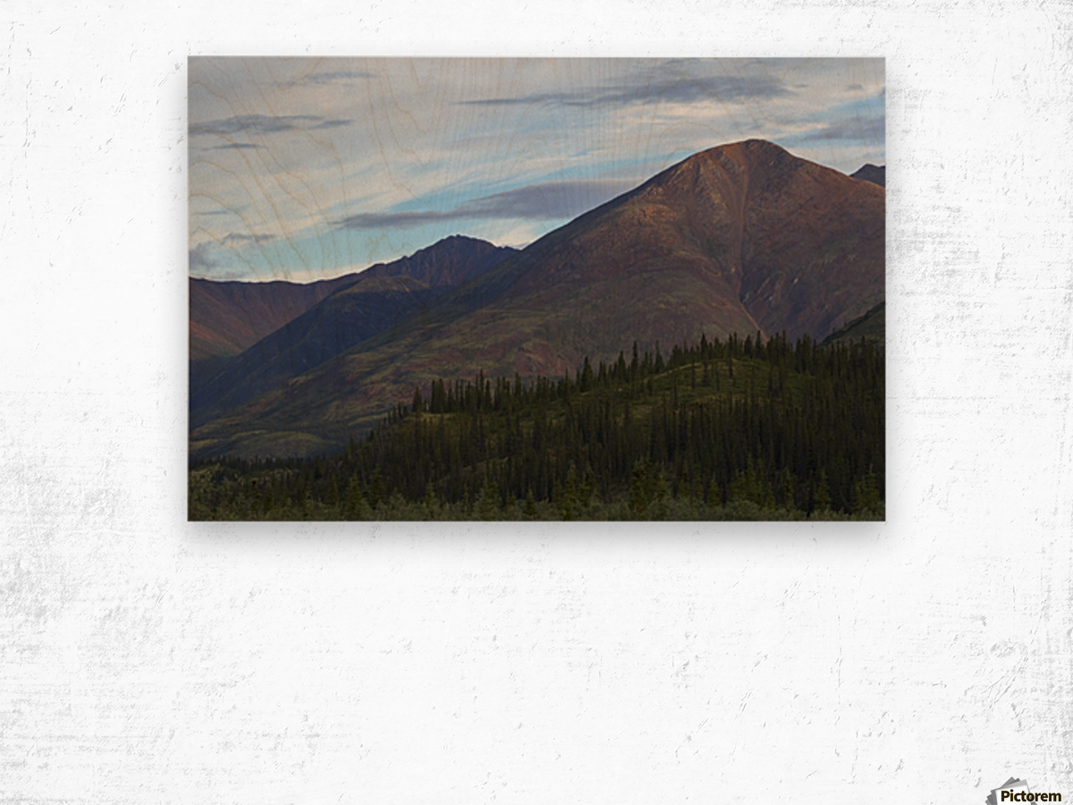 Late afternoon light shining on the mountains along the Wind River in the Peel Watershed; Yukon, Canada Wood print