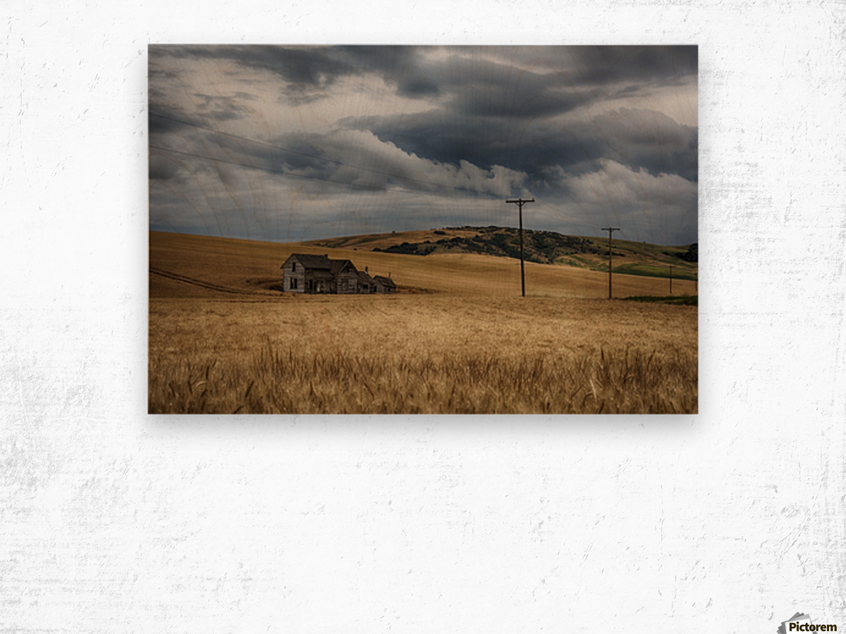 Old, rustic wooden house in the middle of a golden field under a stormy sky; Palouse, Washington, United States of America Wood print