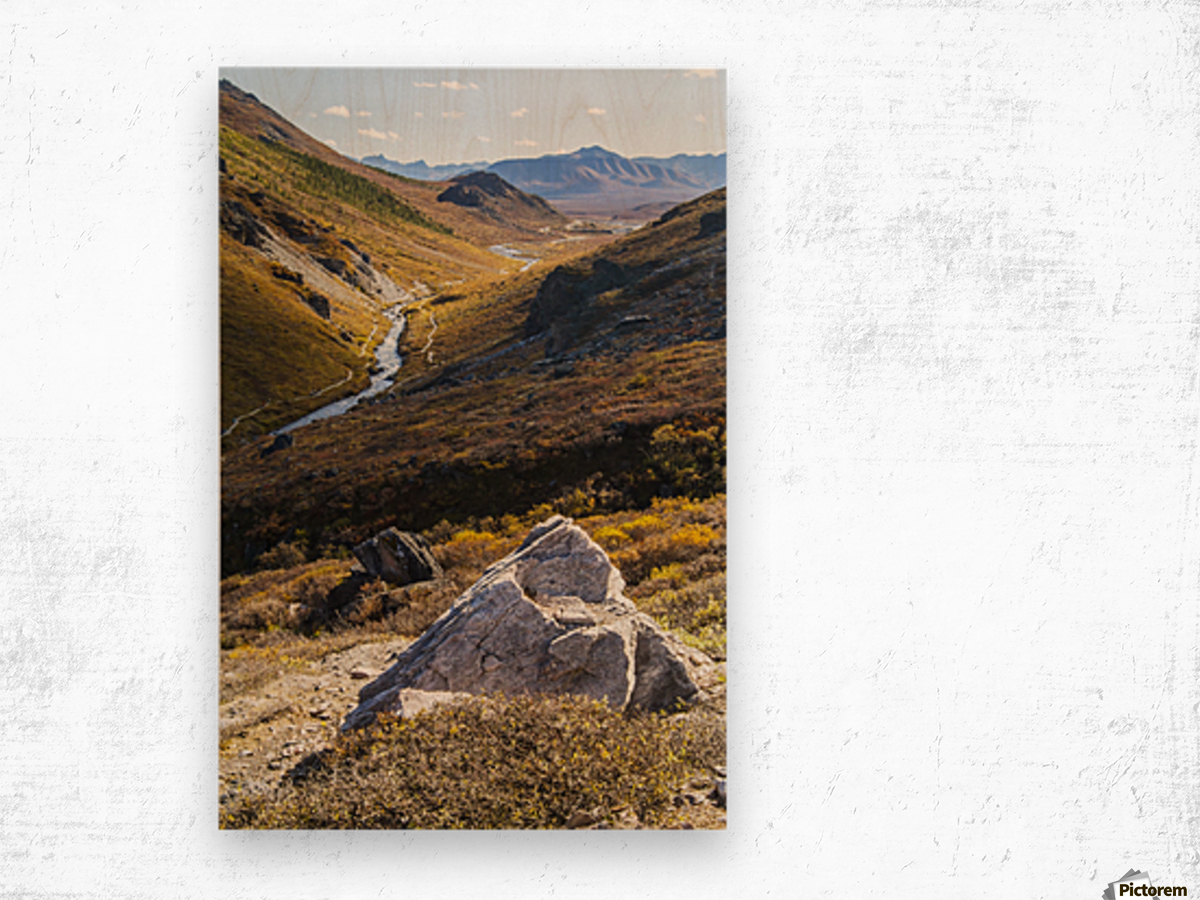 Savage River and the landscape in the rocky high country, Denali National Park and Preserve, interior Alaska; Alaska, United States of America Wood print