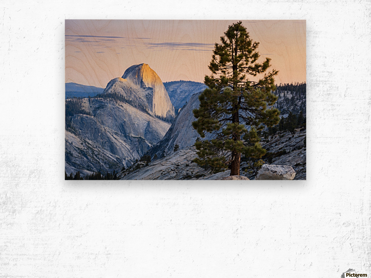Half Dome seen from Olmsted Point, Yosemite National Park; California, United States of America Wood print