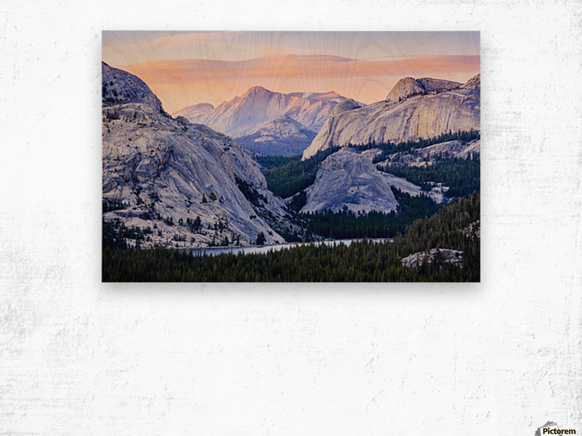 The high country in Yosemite National Park; California, United States of America Wood print