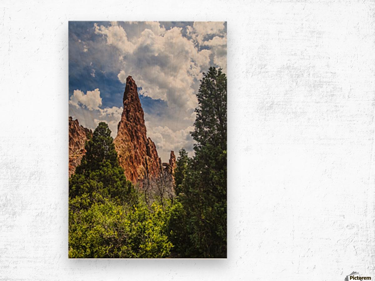 Garden of the Gods; Colorado Springs, Colorado, United States of America Wood print