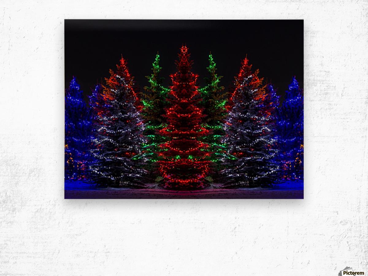 Colourful Christmas lights around several evergreen trees; Calgary, Alberta, Canada Wood print