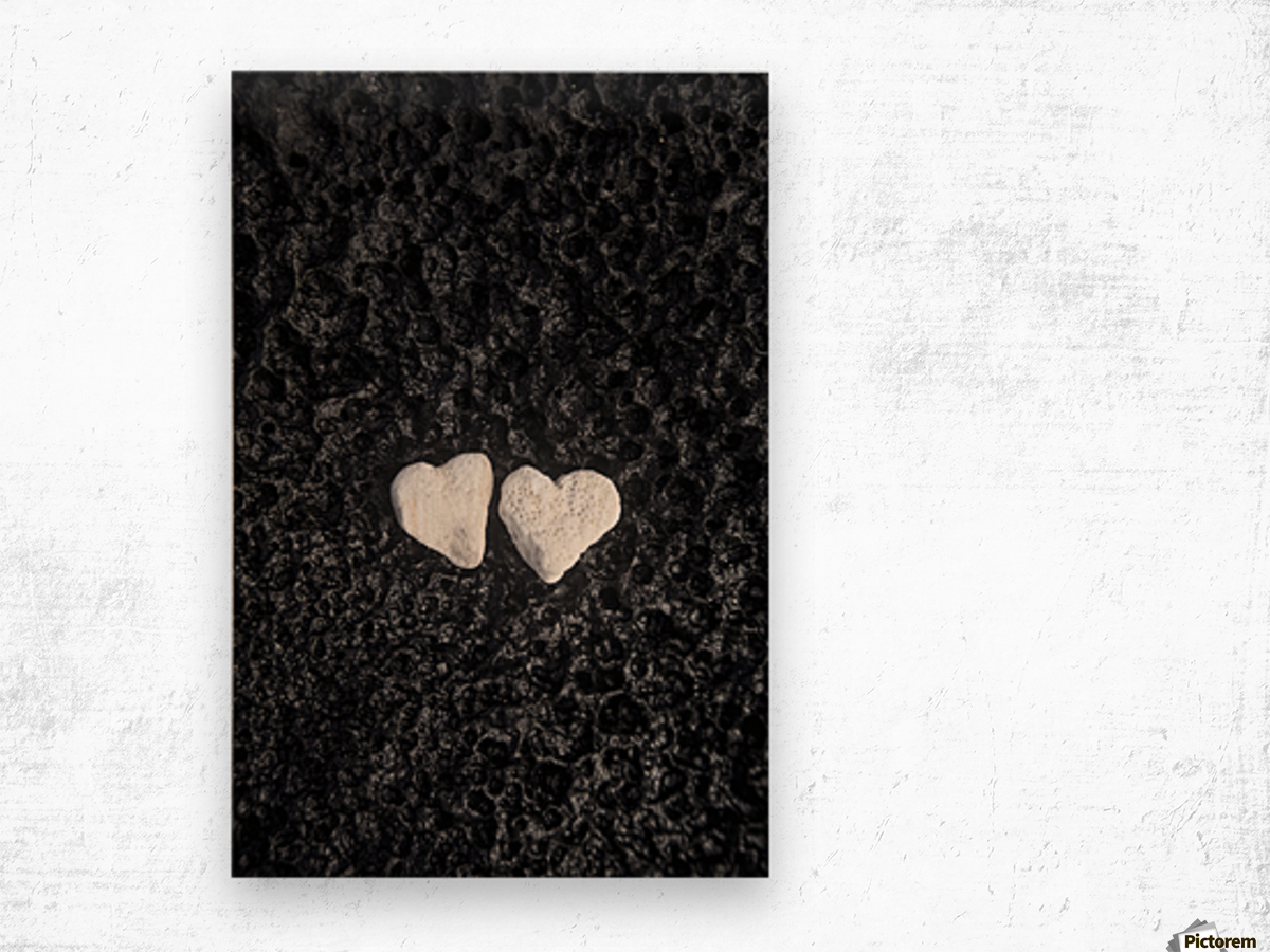 Two white coral heart shaped rocks placed together on a wet lava rock near the ocean; Honolulu, Oahu, Hawaii, United States of America Wood print