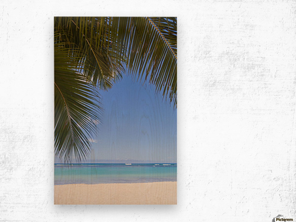 Beautiful clear day on a white sandy beach with coconut palm tree fronds hanging above; Honolulu, Oahu, Hawaii, United States of America Wood print