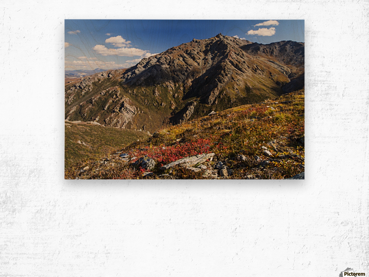 Landscape in the rocky high country of Denali National Park and Preserve, interior Alaska; Alaska, United States of America Wood print