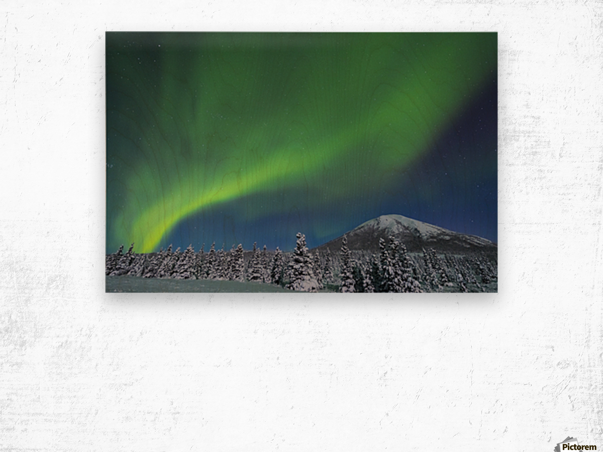 The aurora glows in the sky above Donnelly Dome and a snowy, moonlit landscape, south of Delta Junction; Alaska, United States of America Wood print