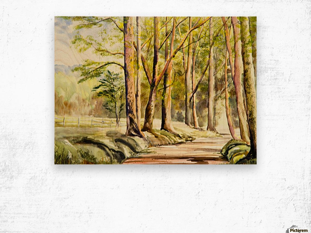 Shady Lane  Wood print