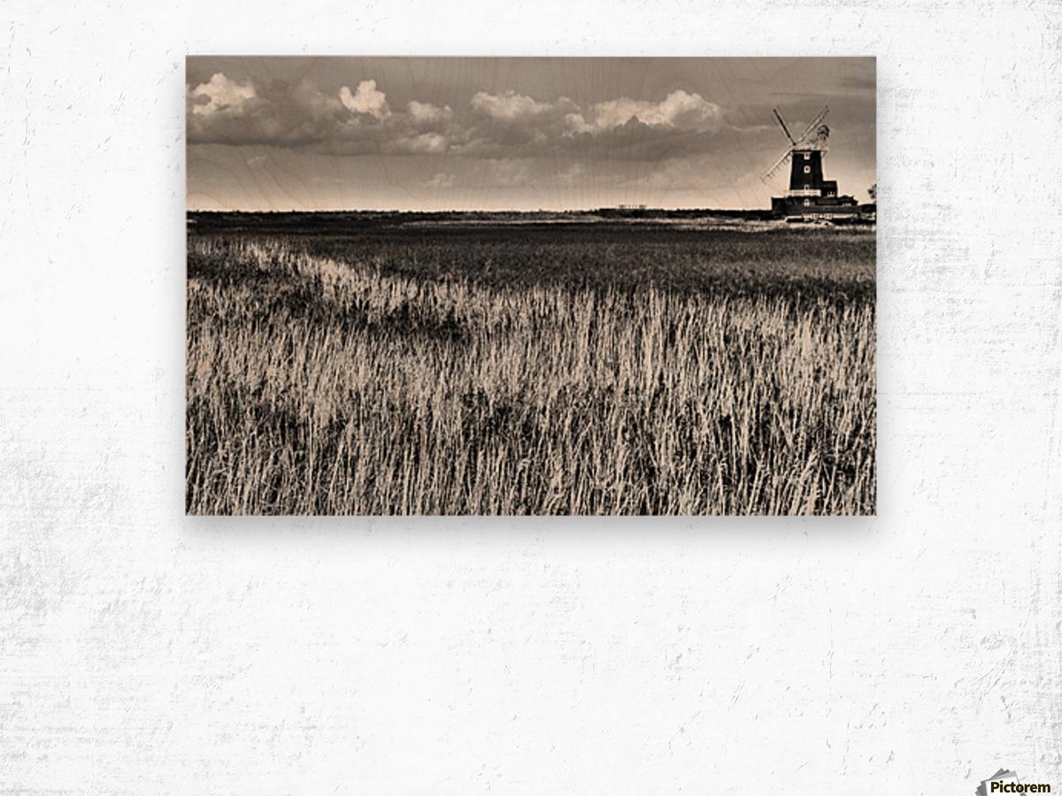 Marsh windmill Wood print