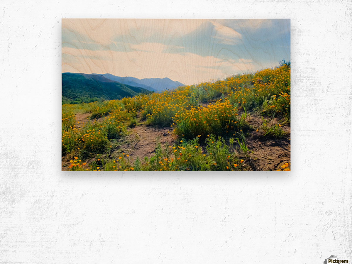 yellow poppy flower field with green leaf and blue cloudy sky in summer Wood print