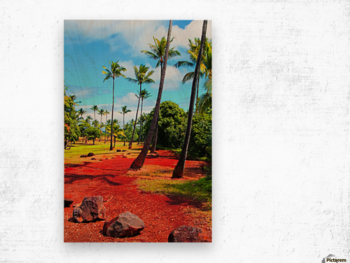 palm trees with green tree and blue cloudy sky in summer Wood print