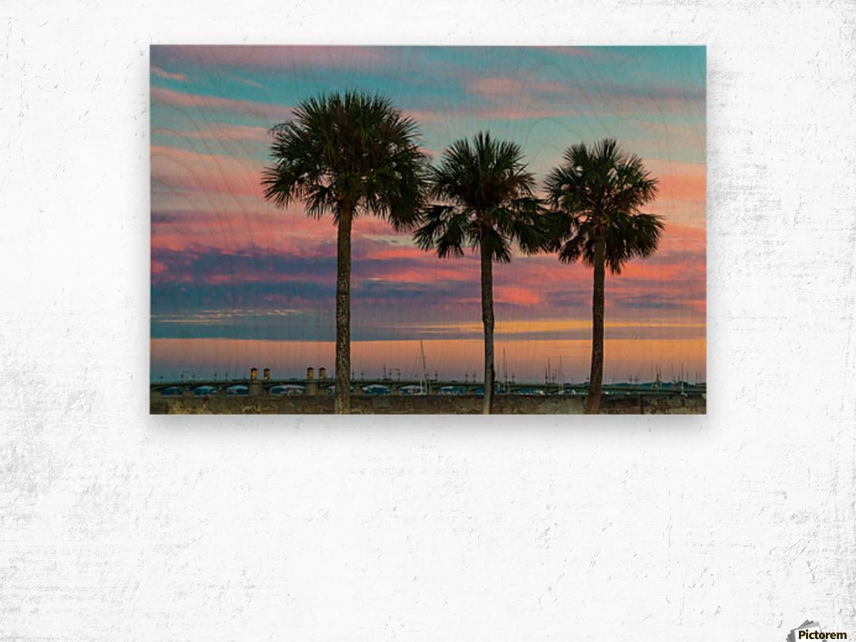 Palm Trees u0026 Sunsets Wood print