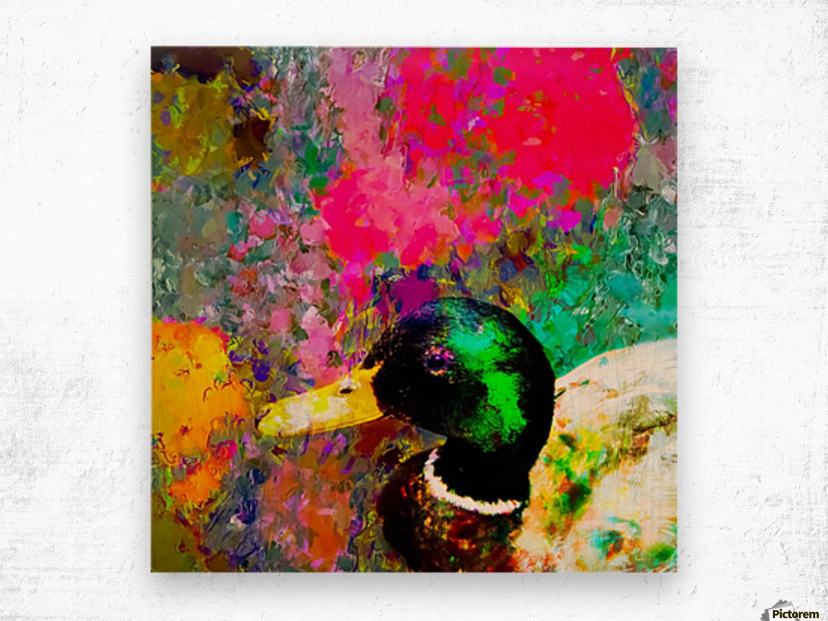 mallard duck with pink green brown purple yellow painting abstract background Wood print
