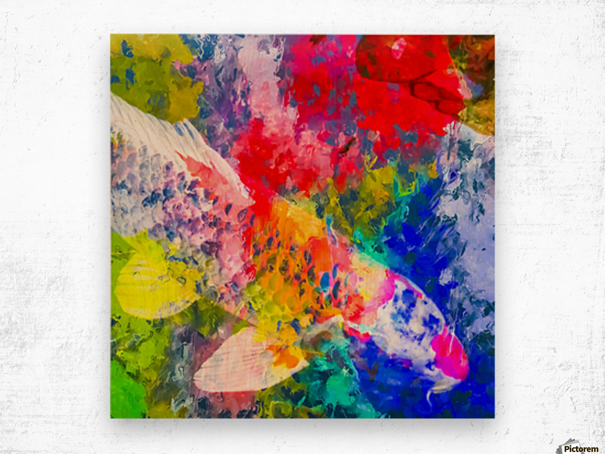 koi fish with painting texture abstract background in red blue ...