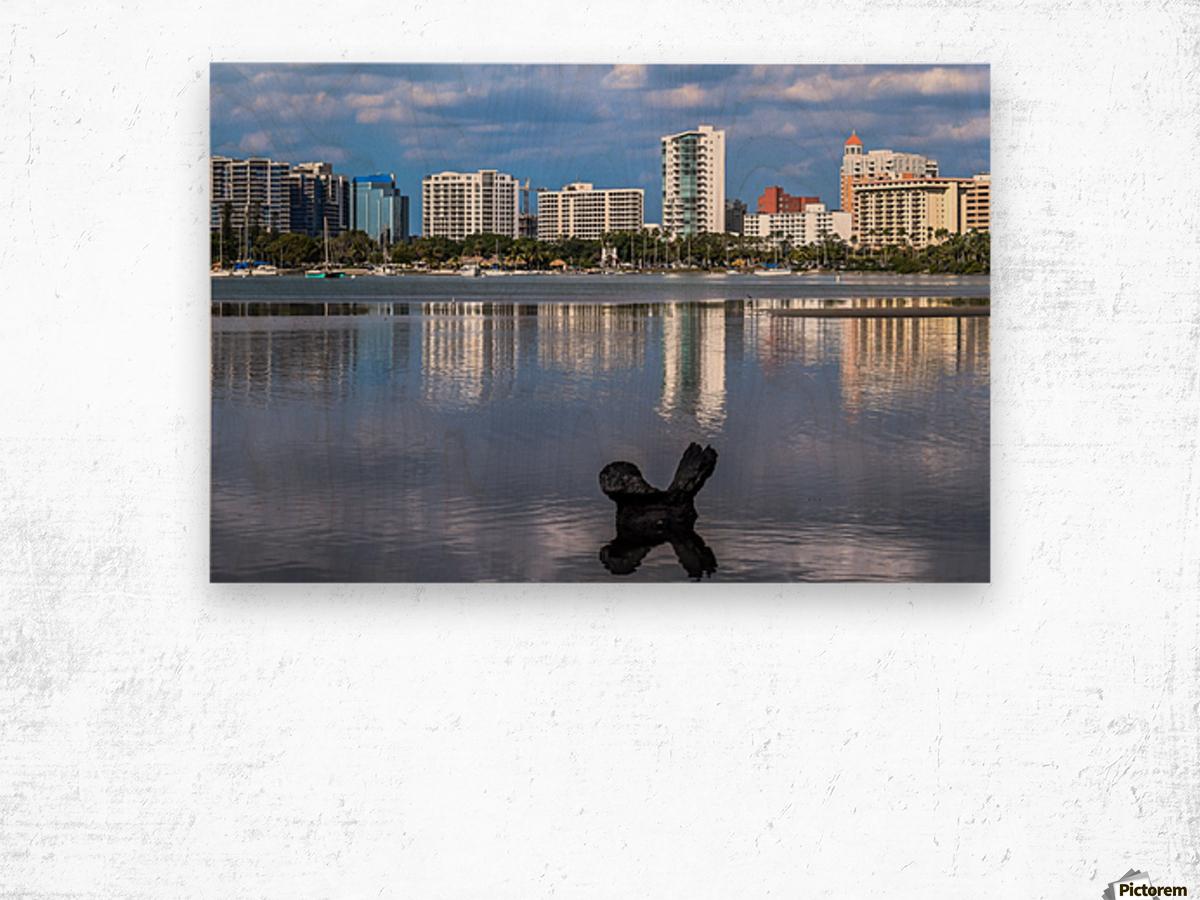 Sarasota Bay Reflection x 2 - vincenzo Canvas