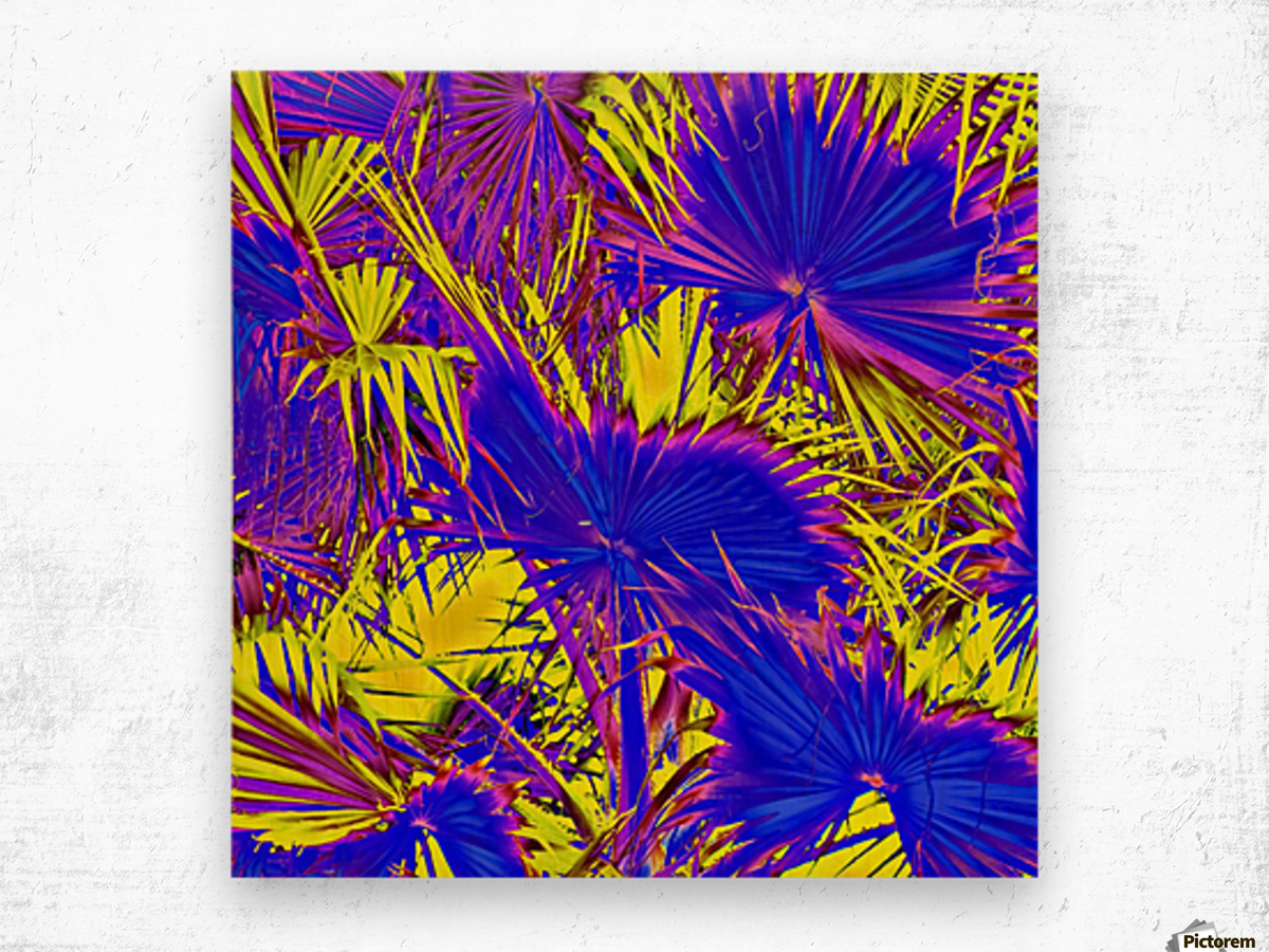 closeup palm leaf texture abstract background in blue pink and yellow Wood print