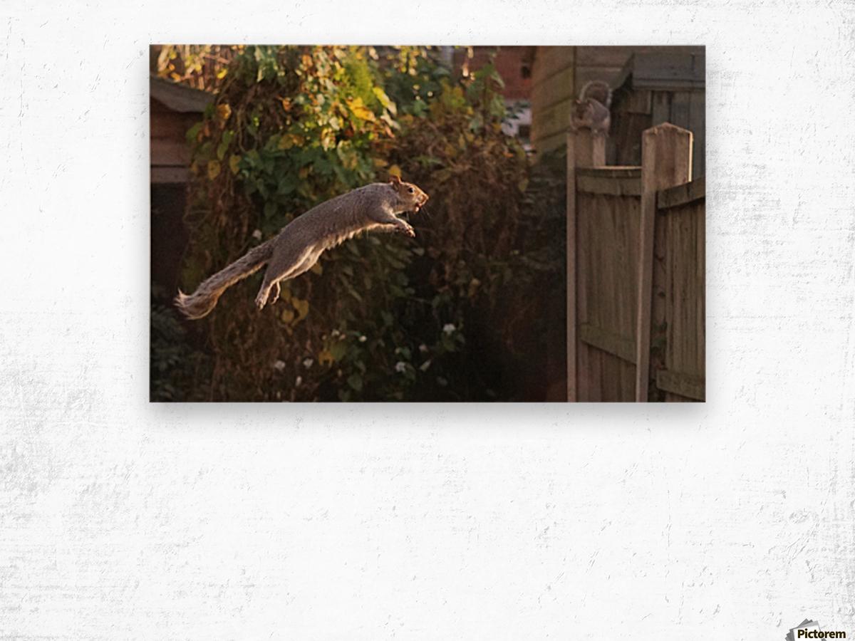 Jumping Wood print