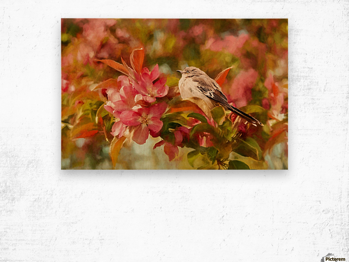 Sparrow In The Apple Tree Wood print