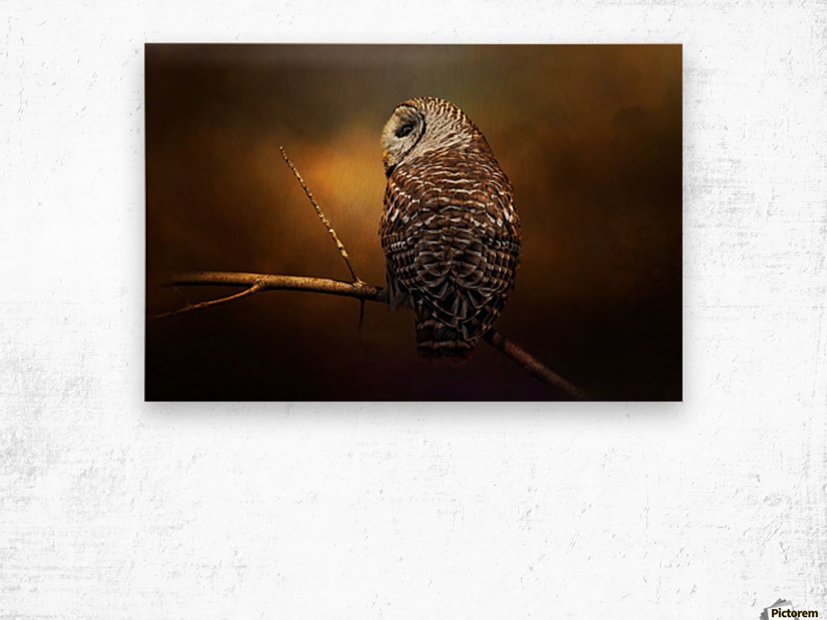 Textured Strix Varia Wood print