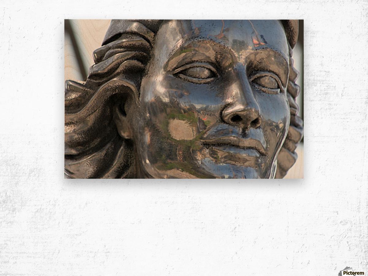 Face of Dolores Del Rio Silver Statue Wood print