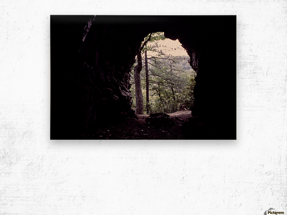 Forest Cave Wood print