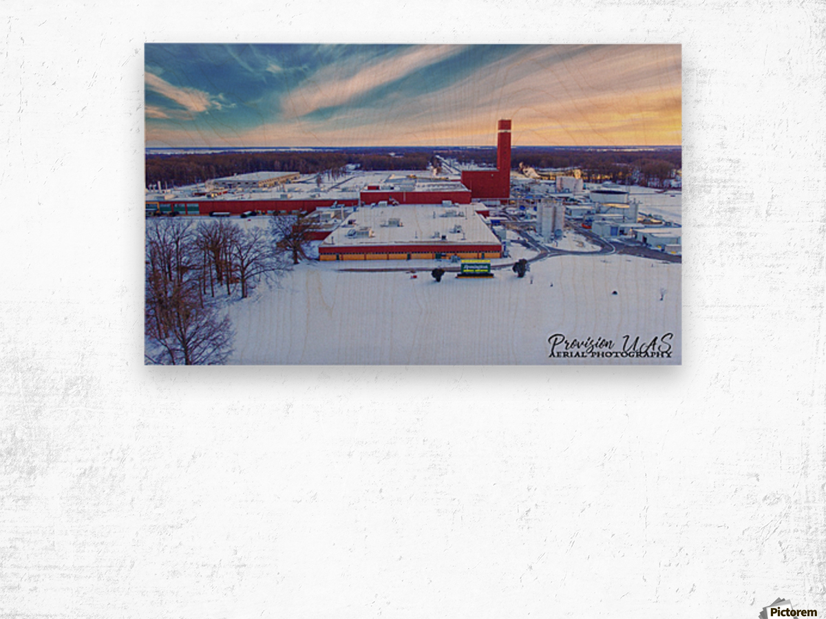 Lonoke, AR | Remington Winter Wood print