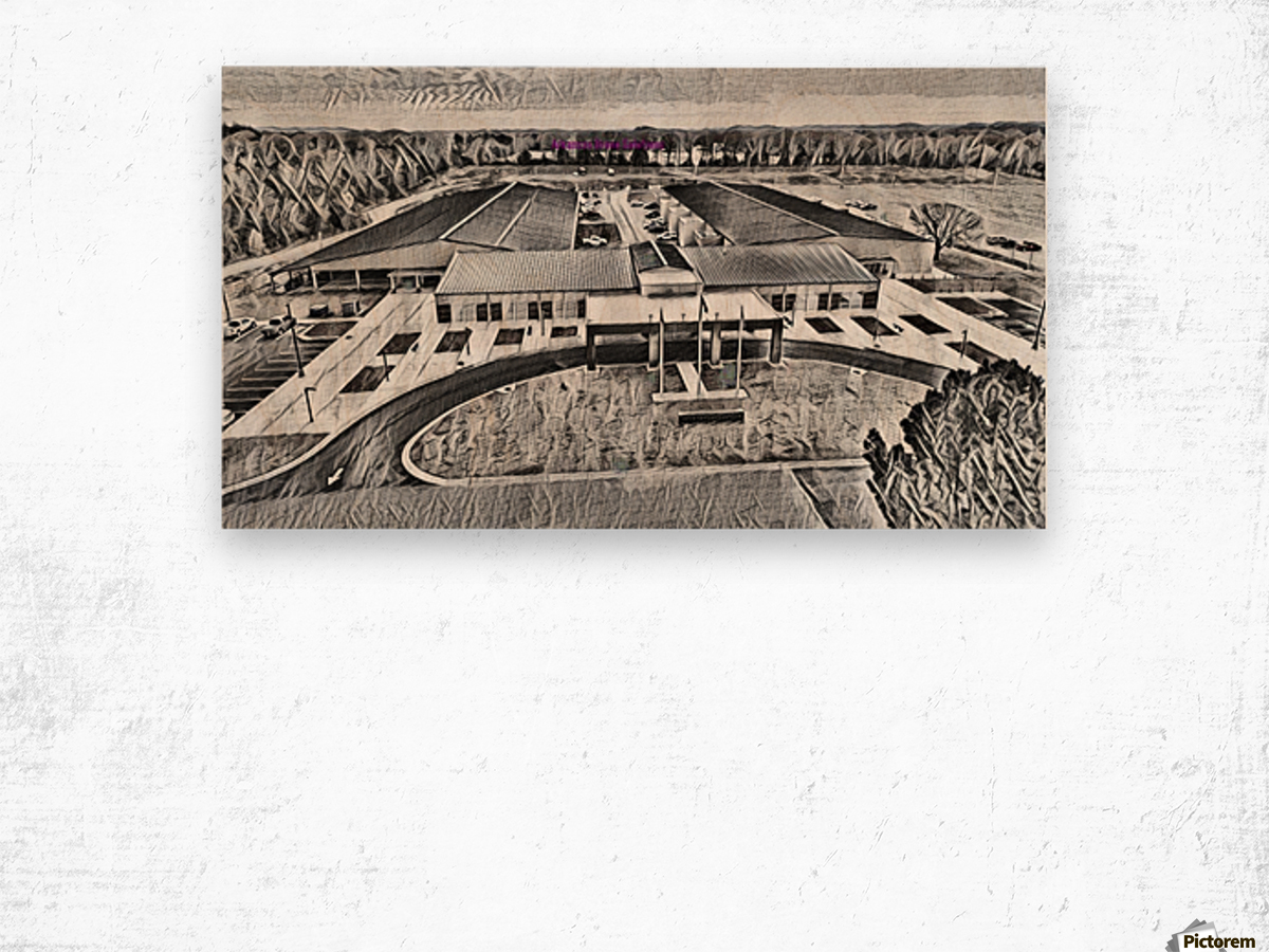 Conway Expo Center 4 Wood print