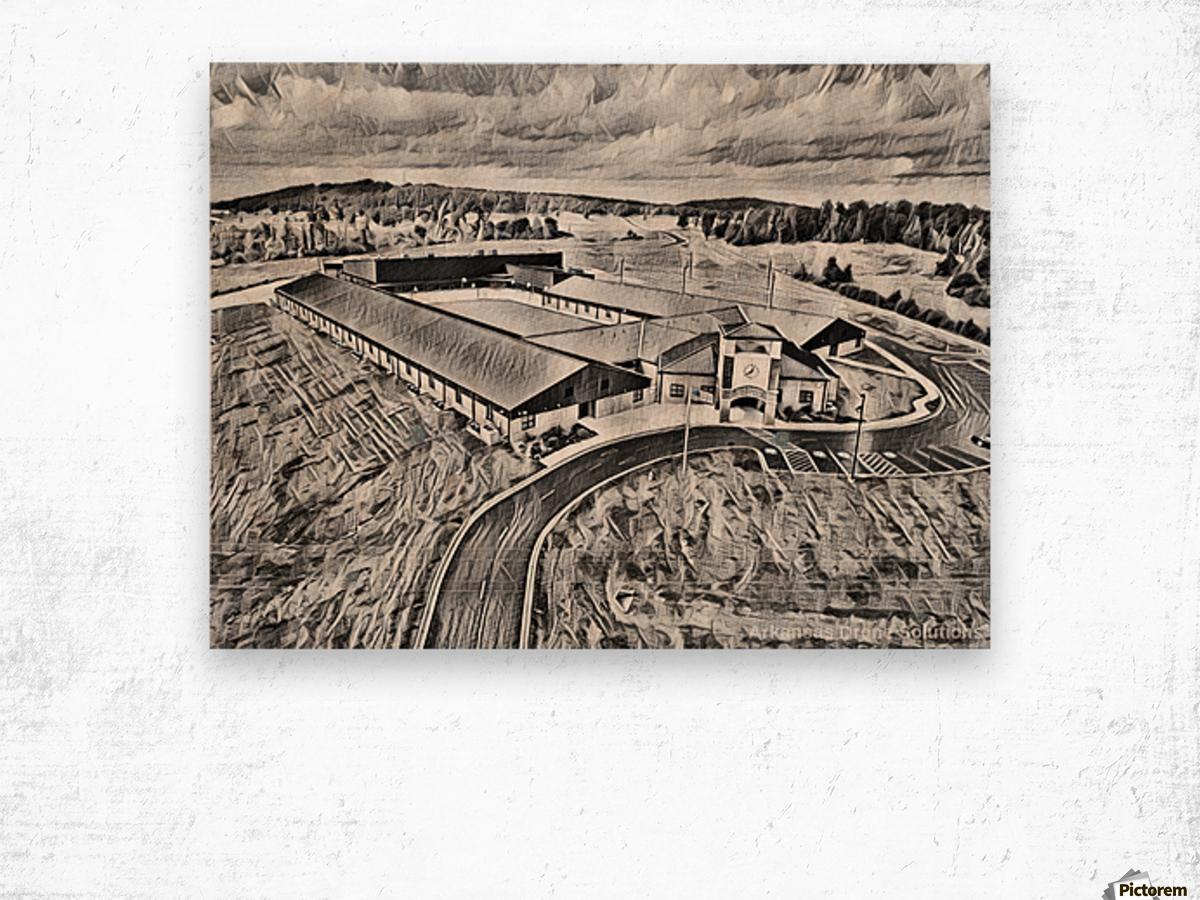 Mitchell Intermediate Wood print