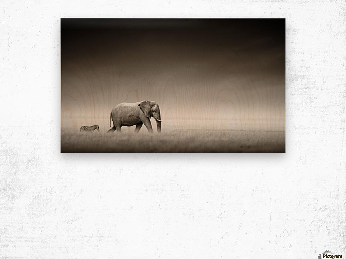 Elephant with zebra (Artistic processing) Wood print